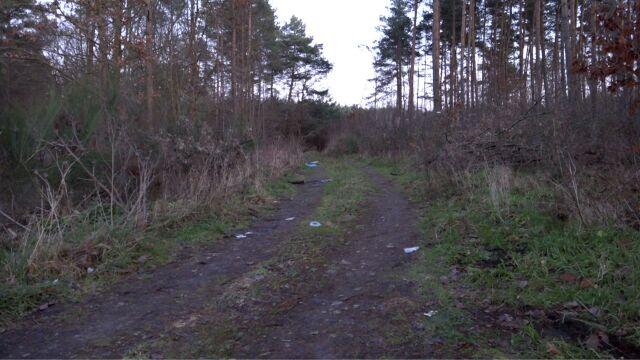 Ciało mężczyzny znalezione w lesie. Dziewięć osób zatrzymanych w związku z zabójstwem