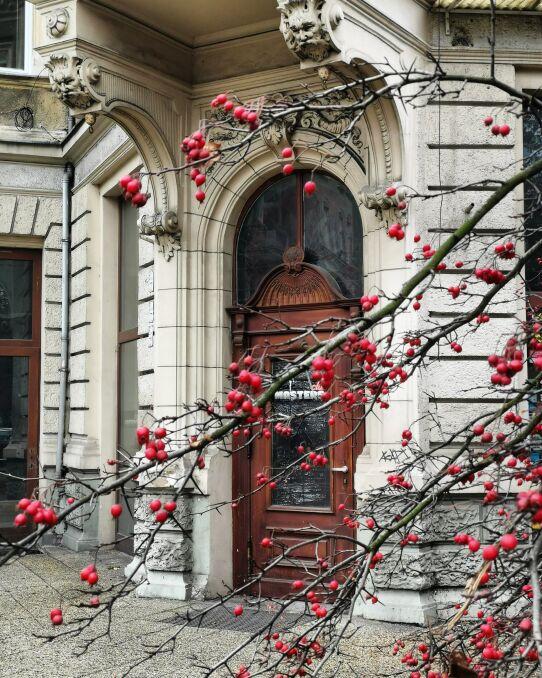 Szczecińska kamienica w obiektywie Moniki Szymaniak