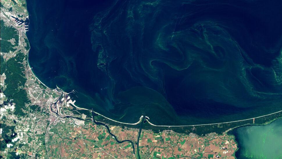 Sinice. Czerwone flagi na 20 plażach, ale kąpieliska w Gdańsku są otwarte