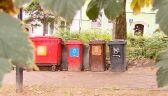 Zbiór informacji na temat segregacji bioodpadów