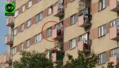 Zarzuty dla ojca, którego dziecko chodziło po parapecie okna na siódmym piętrze budynku