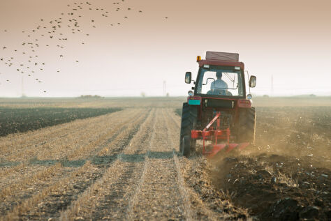 Większość gospodarstw rolnych nie przynosi zysku