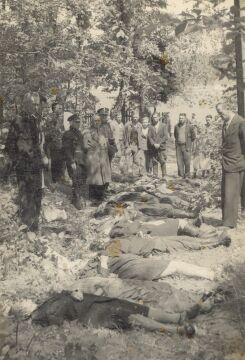 Ofiary napadu na pociąg pod Zatylem (ok. Lubyczy Królewskiej) dokonanego 16 czerwca 1944 r. przez UPA (zb. IPN)