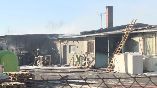 Krosno Odrzańskie: pożar hali produkcyjnej