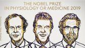 Nobel z medycyny przyznany