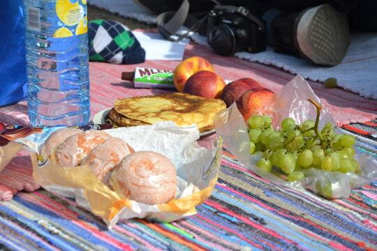 Smakołyki przyniesione na piknik