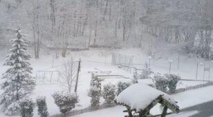 03.04 | Biały krajobraz