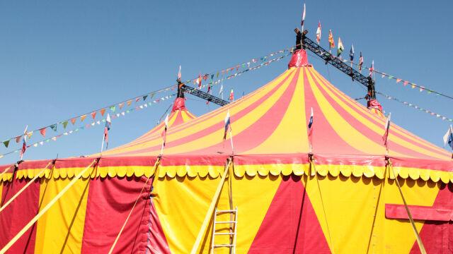Bydgoszcz nie chce widowisk cyrkowych ze zwierzętami