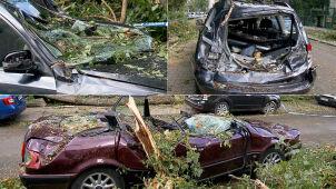 Dwie osoby ranne, setki powalonych i połamanych drzew. Skutki gwałtownej pogody