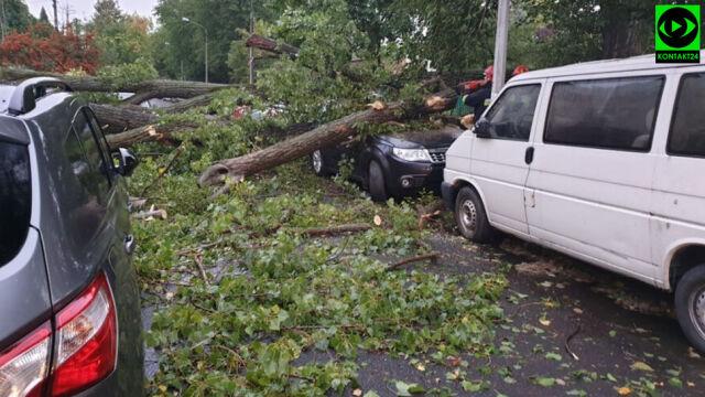 Połamane drzewa, zniszczone samochody. Kilkaset interwencji po wichurach