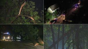 Wichury i setki powalonych drzew w całym kraju. Strażacy interweniowali ponad tysiąc razy