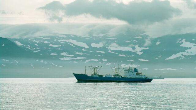 Poparli sankcje wobec Rosji.  Stracą Wyspy Kurylskie na zawsze?