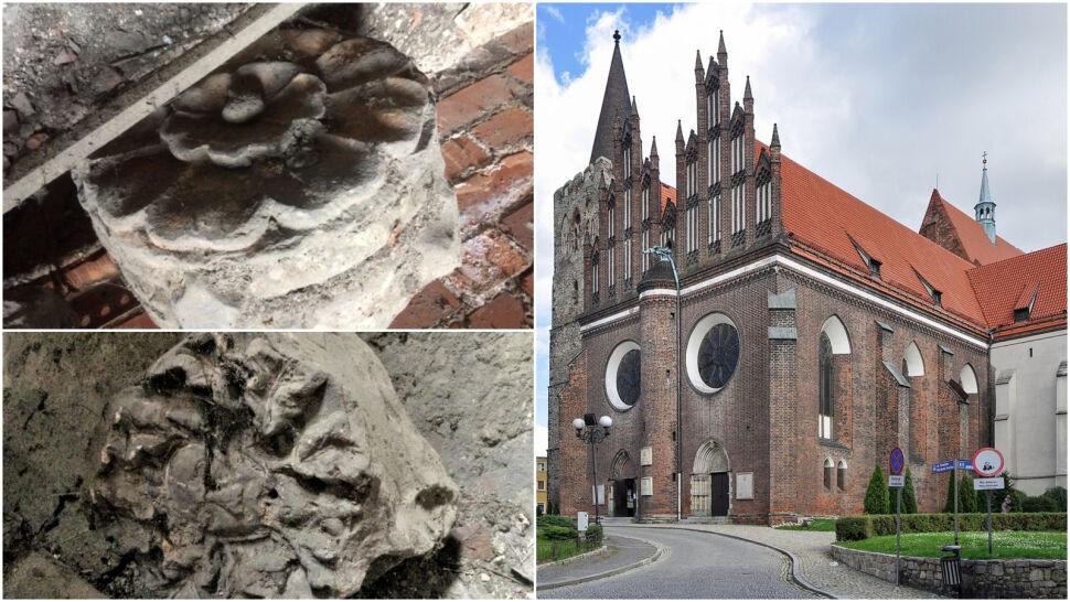 """Wichura odkryła XIII-wieczne zabytki. """"Bezcenny skarb"""" ukryty pod dachem"""