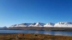 """Mieszkańcy Akureyri nazywają swoje góry """"Toblerone"""""""