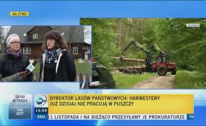 Ekolodzy komentują stanowisko ministra środowiska