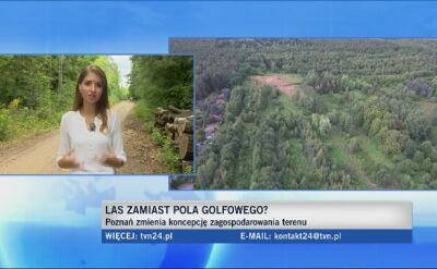 W Poznaniu zasadzą nowy las. Będzie też zielona szkoła dla dzieci