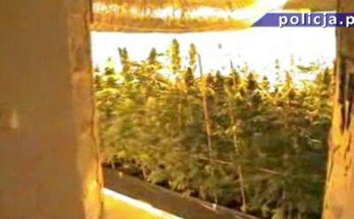 Narkotyki warte ponad milion złotych