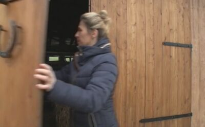 Krowy uciekły z gospodarstwa. Potrzebna pomoc w ich znalezieniu
