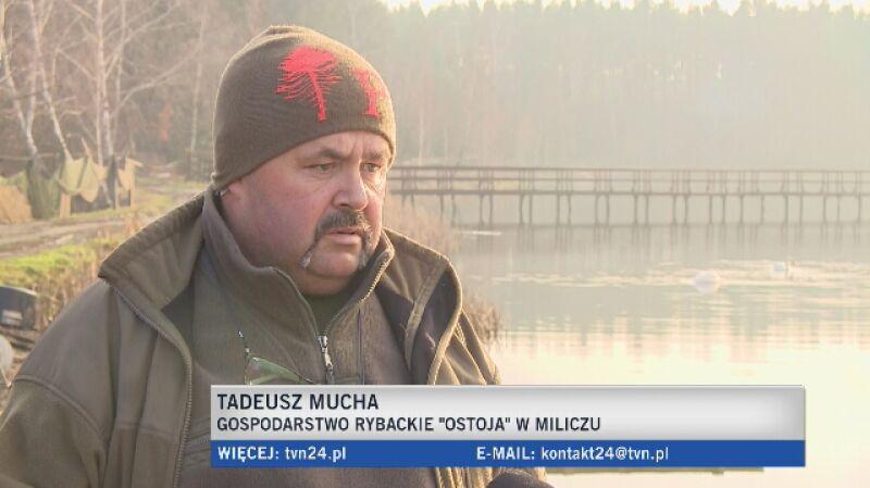 Tadeusz Mucha mówi o tym, jak rozpoznać dobrego karpia