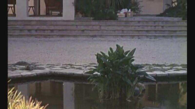 """""""Basen"""" był ponownym spotkaniem Delona i Schneider na planie"""