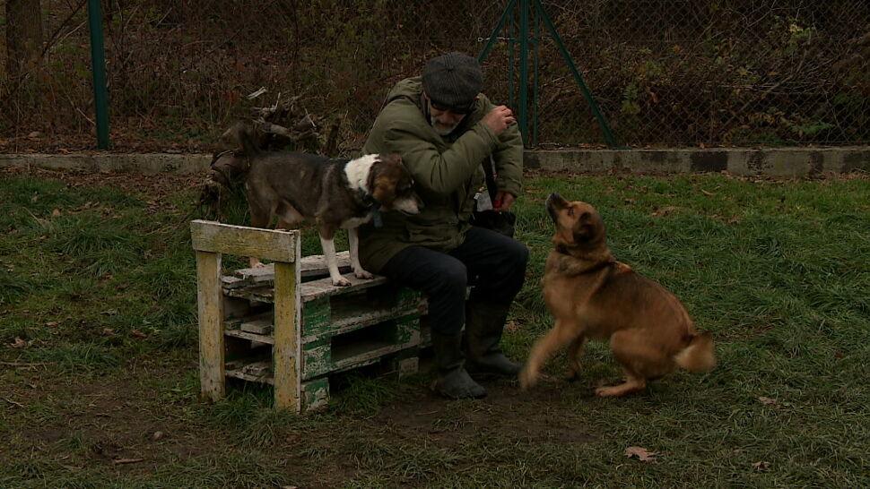 """""""W życiu nie widziałam, żeby ktoś miał tak dobre podejście do psów"""""""