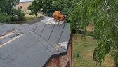Krowa na dachu pałacu. Do parteru strażacy sprowadzali ją trzy godziny