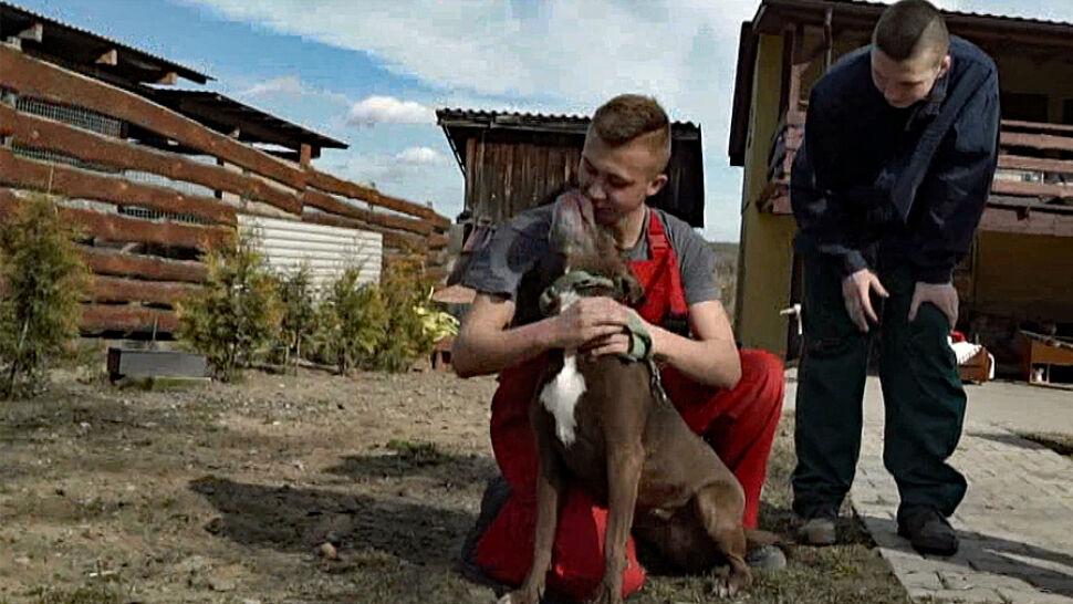 """Resocjalizacja przez pomaganie zwierzakom. """"Trochę zbłądziliśmy, teraz naprawiamy"""""""