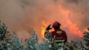 Ogień trawi lasy w Portugalii. Podczas gaszenia pożaru zginął pilot śmigłowca