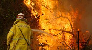 Pożary w Australii, dym gryzie Sydney.