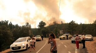 Walka z pożarami w Portugalii trwa. 31 osób rannych