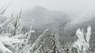 Prognoza pogody na dziś:  południe Polski całe na biało