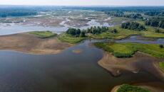 Niski poziom wody w Pilicy (PAP/Grzegorz Michałowski)