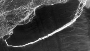Życie pod lodowcem. Ekosystem był ukryty przez tysiące lat