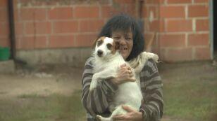 Mieszka z 50 psami. Czy sąd przymusowo umieści sławną malarkę w domu opieki?